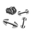 dumbbells weights icons for sport fitness vector image
