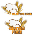 gluten free symbol set isolated on white vector image