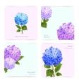 Hydrangea Cards Set vector image