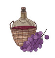 national georgian red wine in bottle in straw vector image