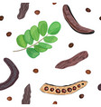 ripe carob sweet pods leaves seeds seamless vector image