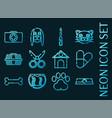 veterinary pharmacy set icons blue neon style vector image