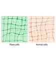 fon cell 3 vector image vector image
