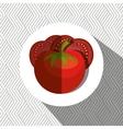 fresh vegetables design vector image