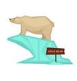 polar bear zoo animal and wooden signboard vector image vector image