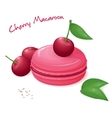 realistic isolated cherry vector image vector image