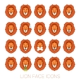 set lion faces vector image