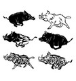 set running wild boars collection stylized vector image