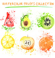 Watercolor fruit set vector image vector image