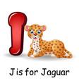 animals alphabet j is for jaguar vector image vector image