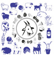 goat and sheep drawings and icons vector image vector image