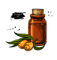 seabackthorn essential oil bottle with berry hand vector image vector image