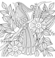 Hand drawn zentangle exotic tropical bird sitting vector image