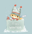 little winter fox vector image vector image