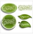 Organic Openwork inscription vector image