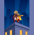 superheroine roof watch vector image vector image