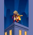 superheroine roof watch vector image