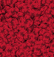 Valentines Day Background with Roses vector image