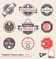 Volleyball League Champs Labels vector image vector image