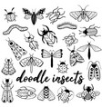 big hand drawn doodle set with insects vector image vector image