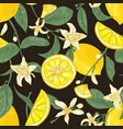 botanical seamless pattern with lemons whole and vector image vector image
