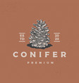 conifer vintage retro logo icon vector image