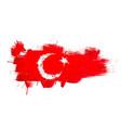 grunge map turkey with turkish flag vector image