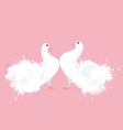 pair of white enamored doves with watercolor vector image