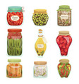 pickled vegetables food homemade glass jar set vector image