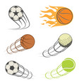 set of sports balls vector image vector image