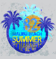 summer surf typography t-shirt graphics vector image vector image