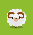 abstract flat sheep icon vector image