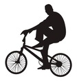 bicycle rider vector image vector image