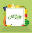 nature fruits frame vector image vector image