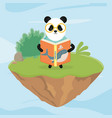panda with glasses reading a book fantasy fairy vector image