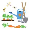 set elements on a garden theme vector image