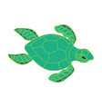 turtle on a white background vector image vector image