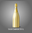 golden champagne bottle on gray background vector image