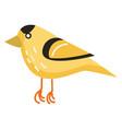 a yellow cartoon bird with beautiful design color vector image vector image