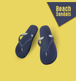beach sandals eps file vector image