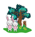 couple rabbit animal and bear next to tree vector image vector image