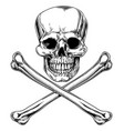jolly roger skull and crossbones vector image vector image