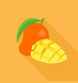 mango icon and piece of sliced mango vector image