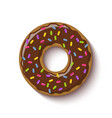 ring shaped donut covered with chocolate vector image