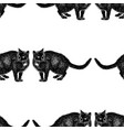 seamless background sketches black cats vector image vector image