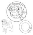 set pug images in collar vector image vector image