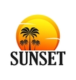 Beautiful Sunset with palm trees Stock vector image