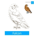 Falcon bird learn birds coloring book vector image vector image