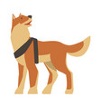 seeing eye dog specially trained assistance guide vector image