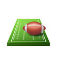 3d american football field icon with green grass vector image